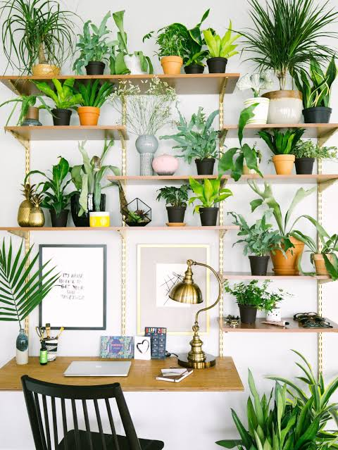 Garden Home Office Interior Ideas Plants And People Make The Best Partners