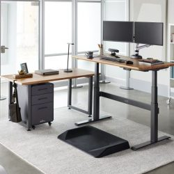 Home Office Ideas With Standing Desk