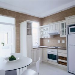 Apartments Bedroom Bath Amusing Small Apartment Kitchen Design