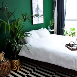 Best Ideas About Green Bedrooms On Pinterest Green Bedroom Unique Green Bedroom Design Ideas