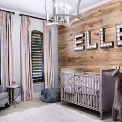 Best Nursery Decorating Ideas Images On Pinterest Cool Baby Bedroom Theme Ideas