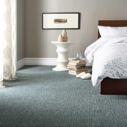 Best Types Of Carpet For Adorable Best Carpets For Bedrooms
