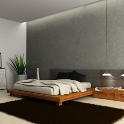 Modern Master Bedroom Design Ideas Pictures Inexpensive Contemporary Master Bedroom Design
