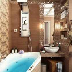 Captivating Pioneering Bathroom Designs Top Small Home Remodel Minimalist Pioneering Bathroom Designs