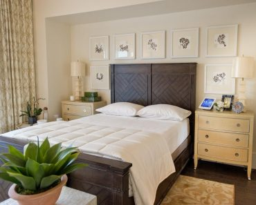 Master Bedroom Color Amusing Bedroom Color Schemes