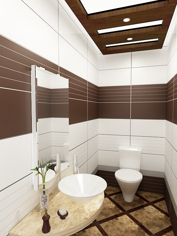 Small Bathroom Designs Ideas Hative Inspiring Brown Bathroom Designs